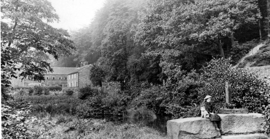 The New Dam weir (clearly overgrown) with Roscoe Wheel and cottages behind (undated). The shuttle mechanism on the inlet to the head goit, with roller and capstan, is mounted on the stones beside the girl. Sheffield City Council, Libraries Archives